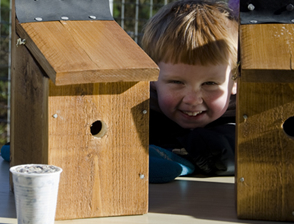 Nestbox making workshop at Wildwood, Bristol public-engagement project