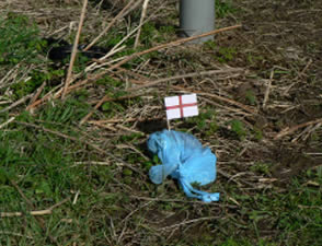 National Pride – an environmental intervention highlighting dog fouling and our environment.
